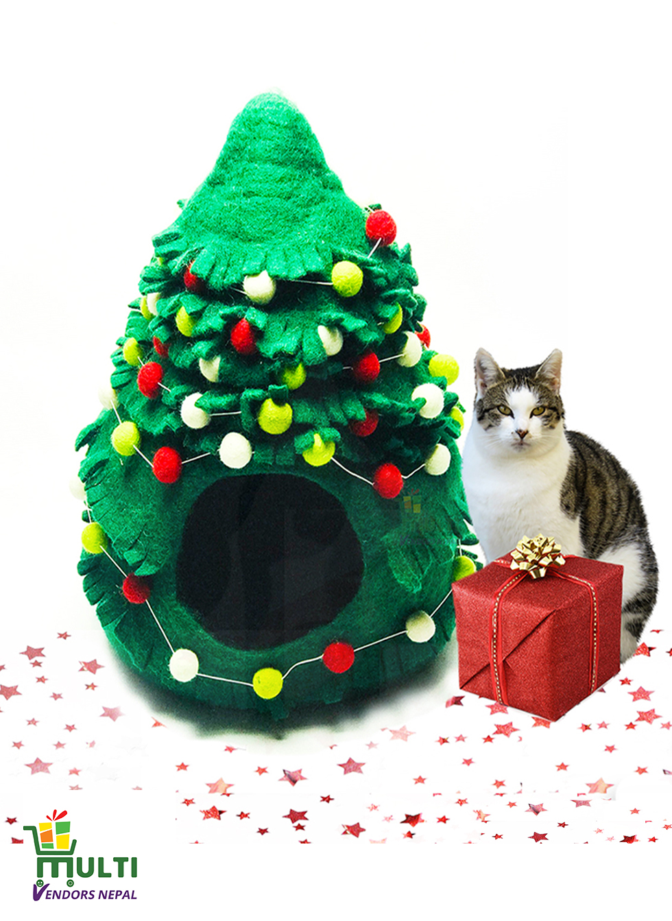 Cat Cave Christmas Design
