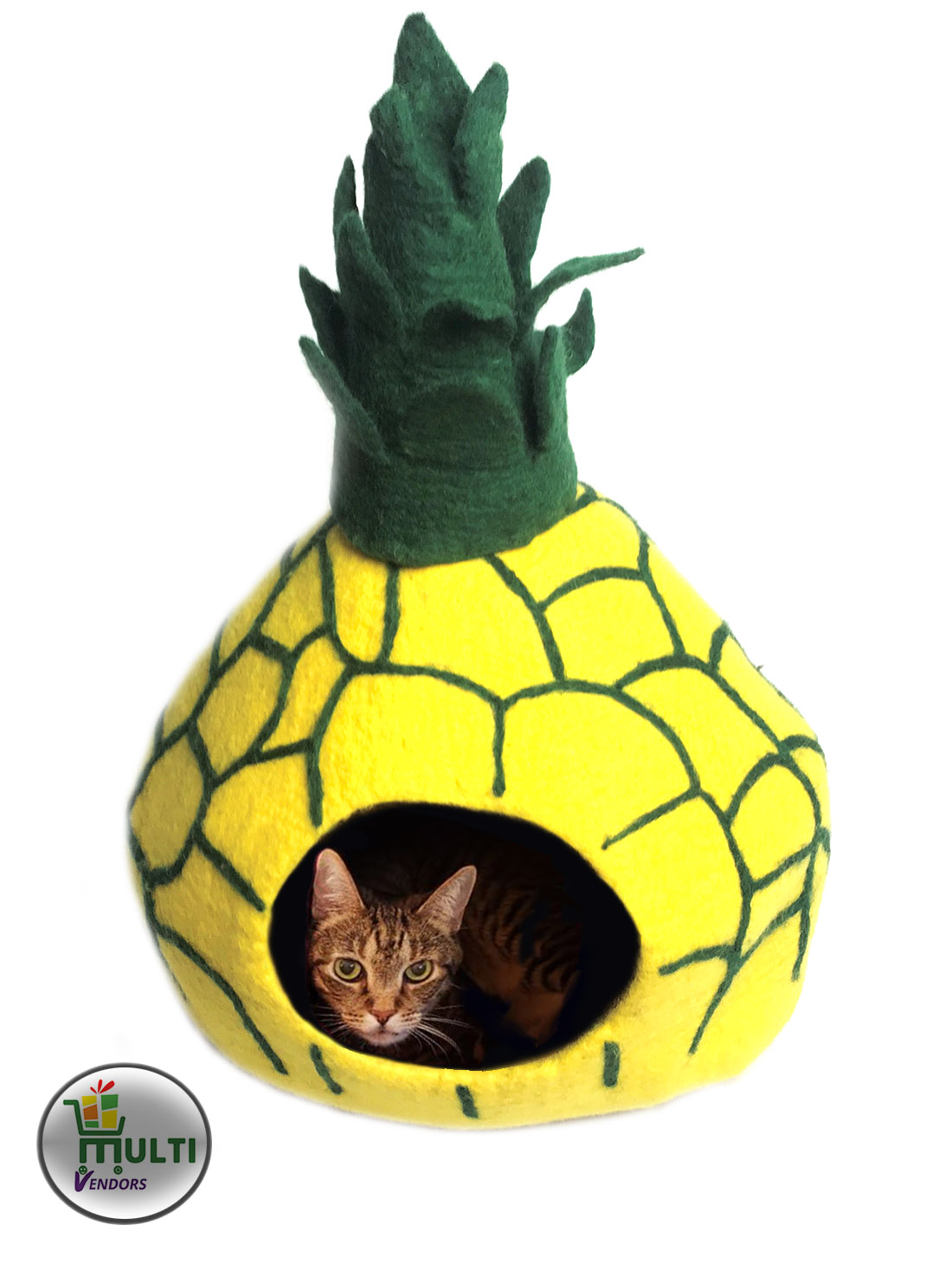 MVSEB-104-Pineapple Design